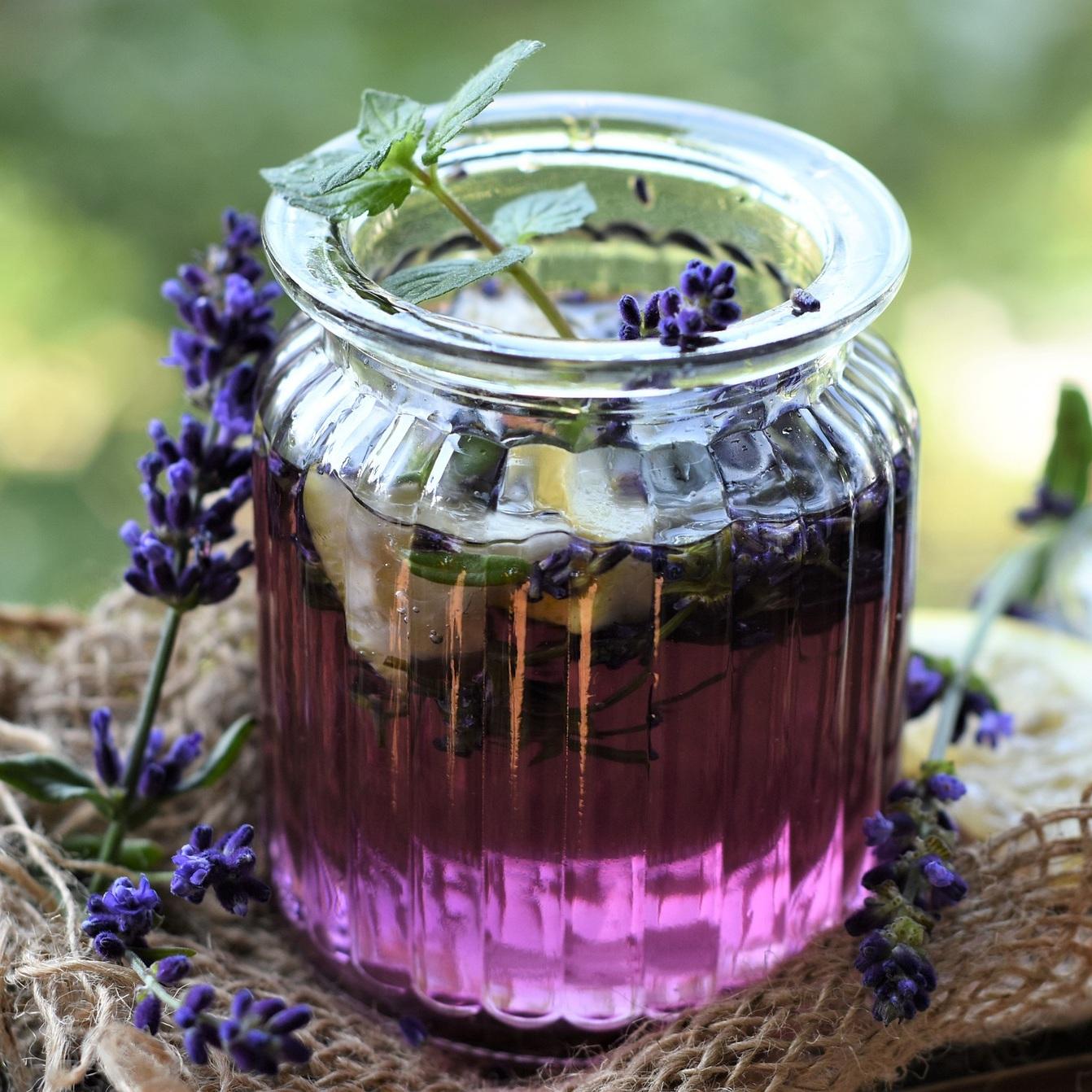 lavender-4355523_1920.jpg