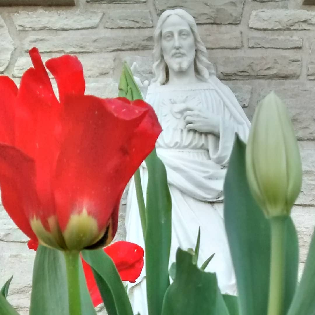Sacred Heart of Jesus with spring flowers, spring at White House Jesuit Retreat, St Louis MO