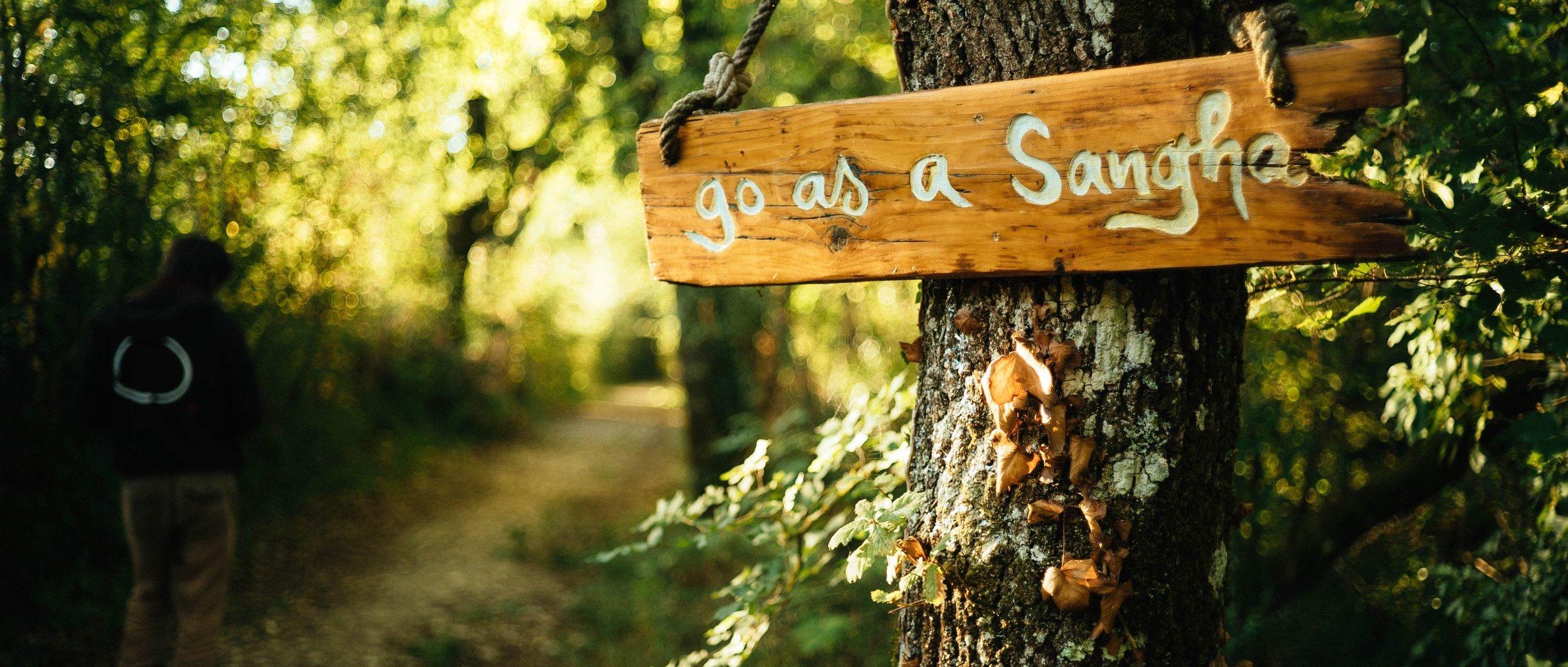 Go-as-a-sangha1.jpg