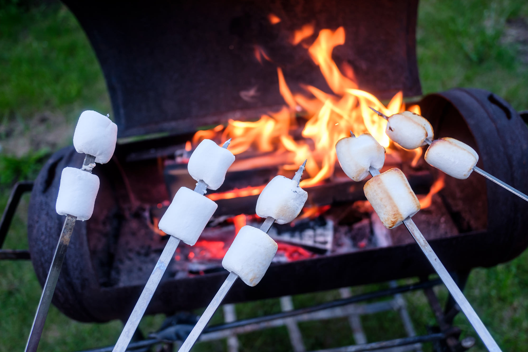 photodune-21453945-marshmallow-on-metal-skewer-xl.jpg
