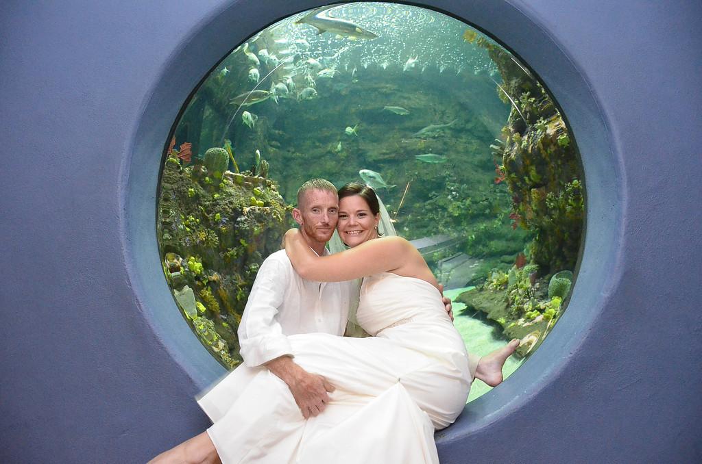 Aquarium Wedding - Newly married at the aquarium.