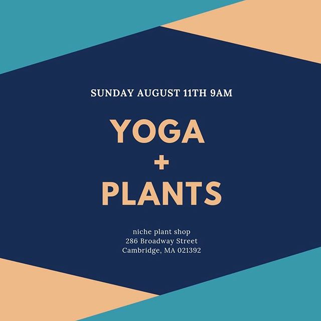 WE'RE Back! Come experience a nourishing yoga practice suited for all levels and all bodies with the nurturing embrace of sunshine at Niche plant shop! This event usually sells out- and we're already half way there. Don't say we didn't warn y'all! . . . . . . #yougoodsis #jayleetheyogi #rachaeldoesyoga #yoga #yogaevents #bostonyoga #blackyoga #selfcare #blackselfcare #bostonyogis #bostonevents