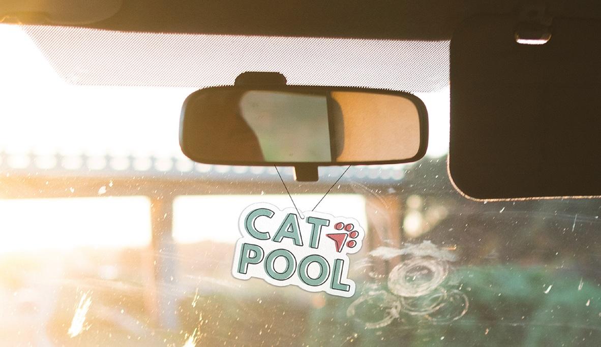 Catpool-Mirror-Hanger.jpg