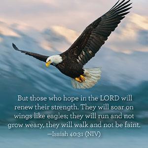 Isaiah-40-31-.jpg