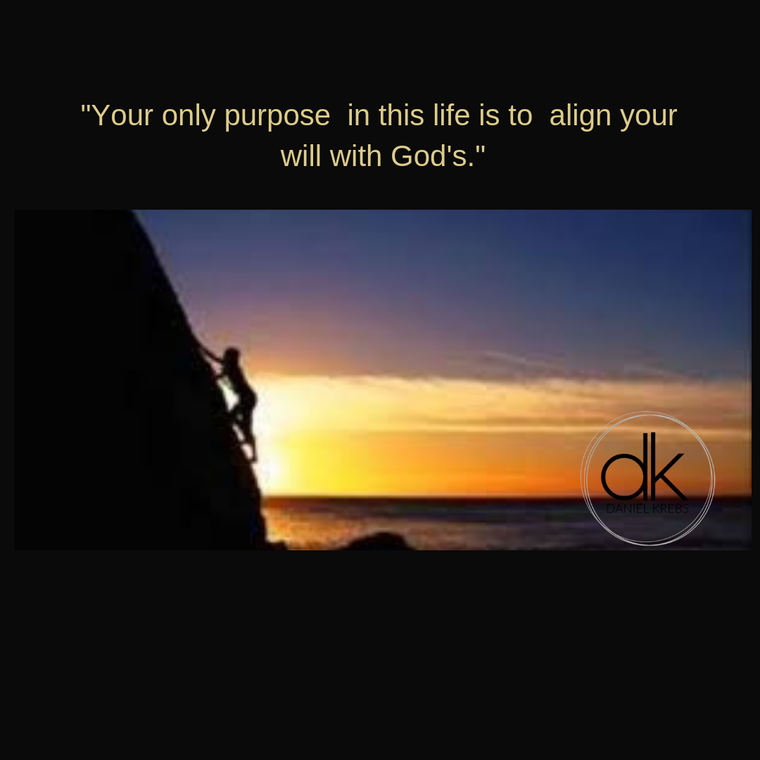 _your only purpose is to align your will with Gods_Daniel Krebs.png