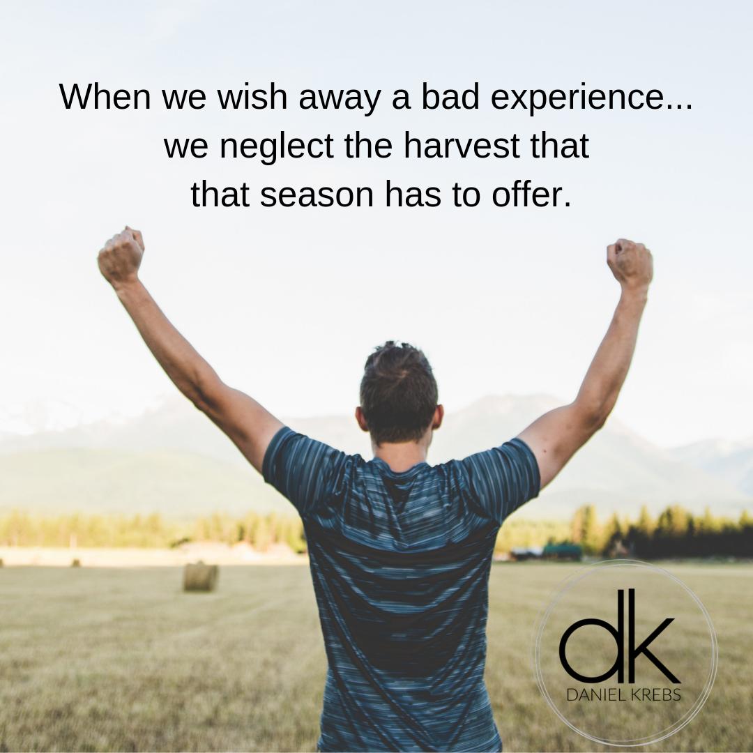 Harvest Daniel Krebs.png