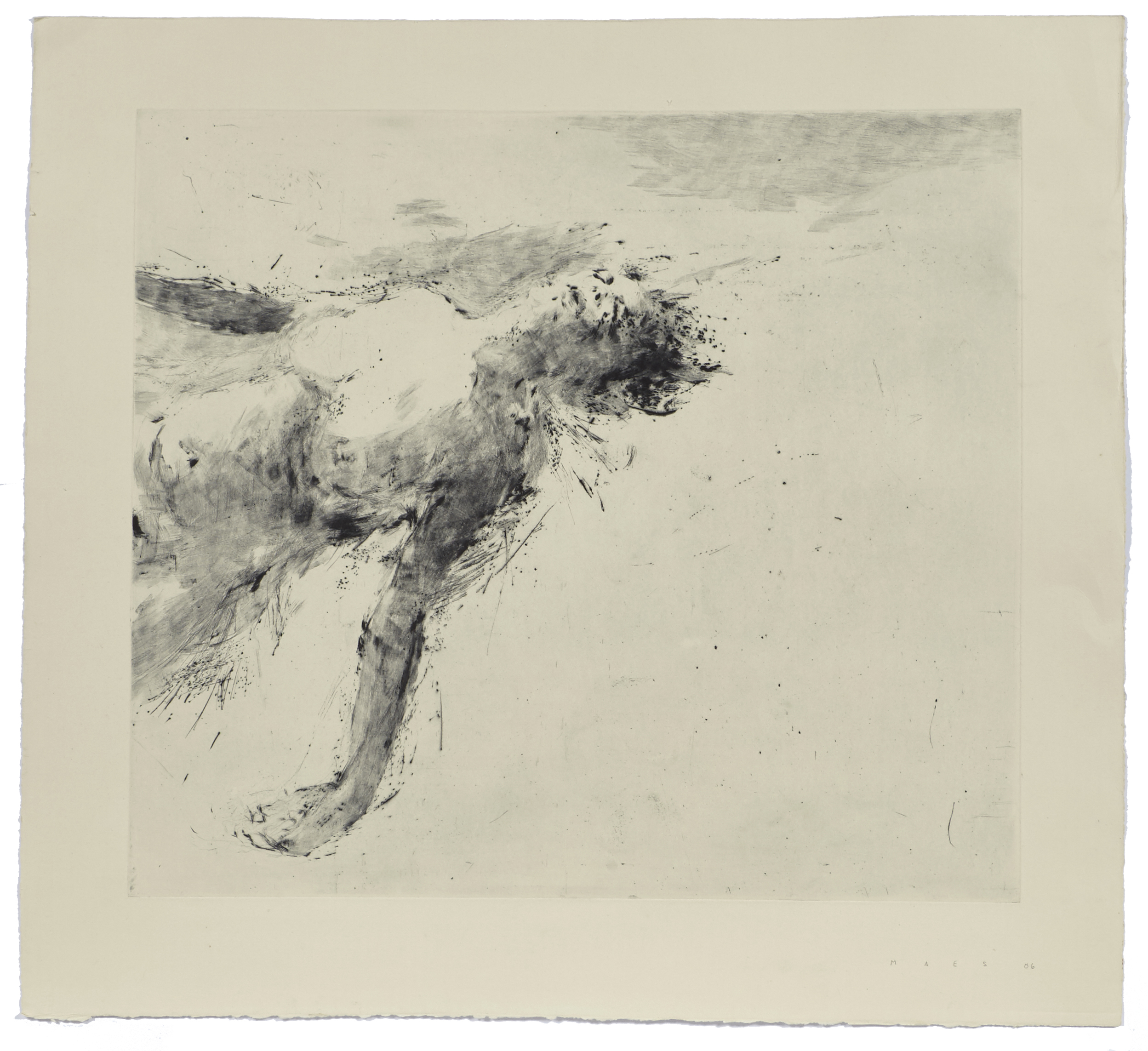 Floating III    2006 | 79 x 72 cm | Dry point