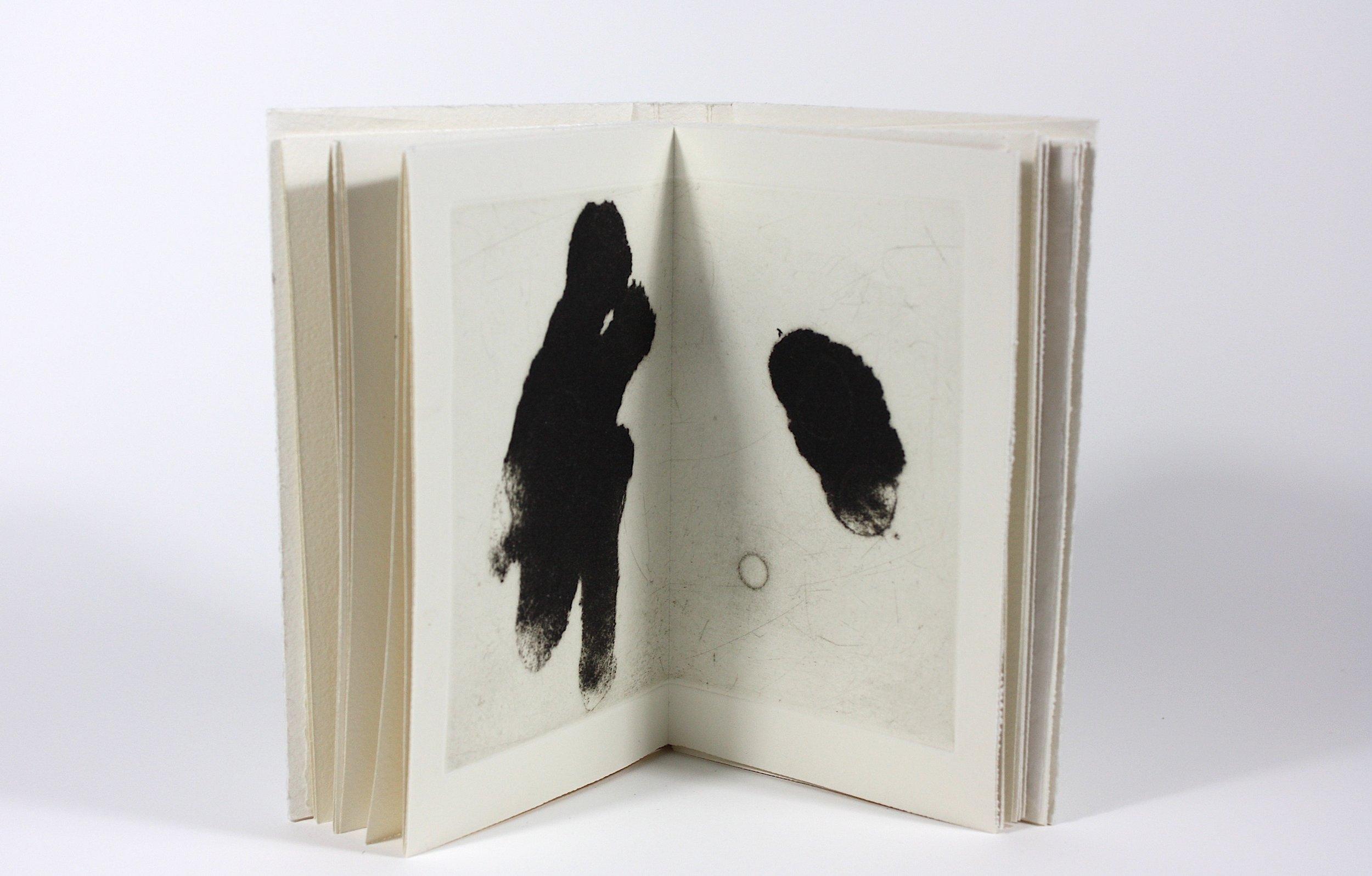- Livres d'artistes