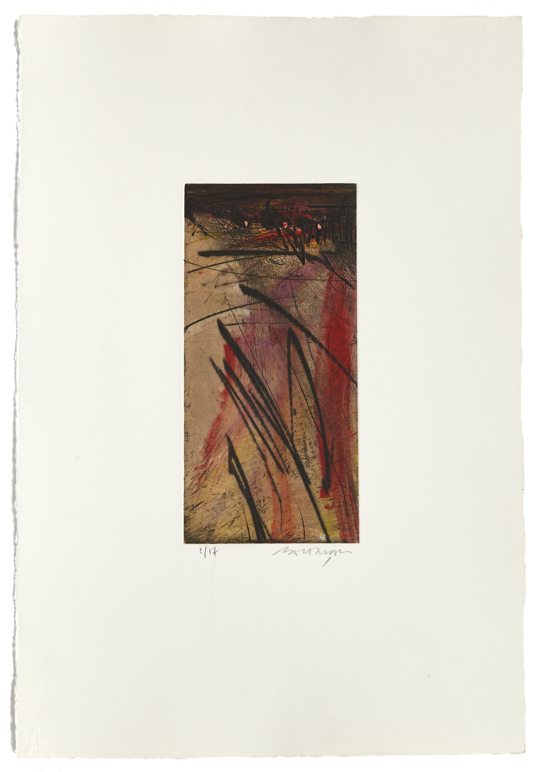 Untitled 6    2000 | 56 x 38 cm | Etching and painted chine | 17 prints | Éditor Atelier-Galerie A. Piroir