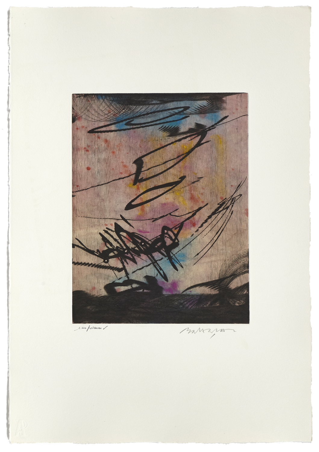 Untitled 3    2000 | 56 x 38 cm | Etching and painted chine | 17 prints | Éditor Atelier-Galerie A. Piroir