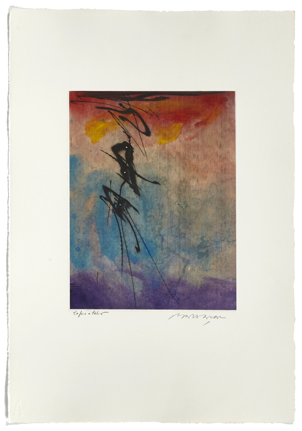 Untitled 4    2000 | 56 x 38 cm | Etching and painted chine | 17 prints | Éditor Atelier-Galerie A. Piroir