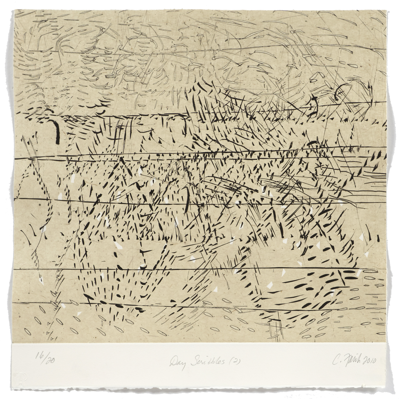 Day scribbles 2    2009 | 55 x 52cm | Chine collé and intaglio | 20 prints | Éditor Atelier-Galerie A. Piroir