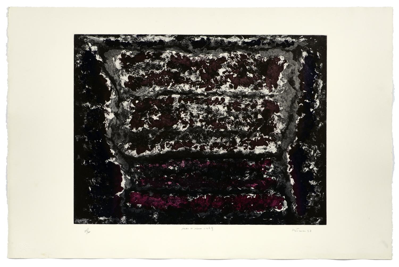 Jardin de pierre 6-1    1993 | 80 x 120 cm | Eau-forte | 60 prints