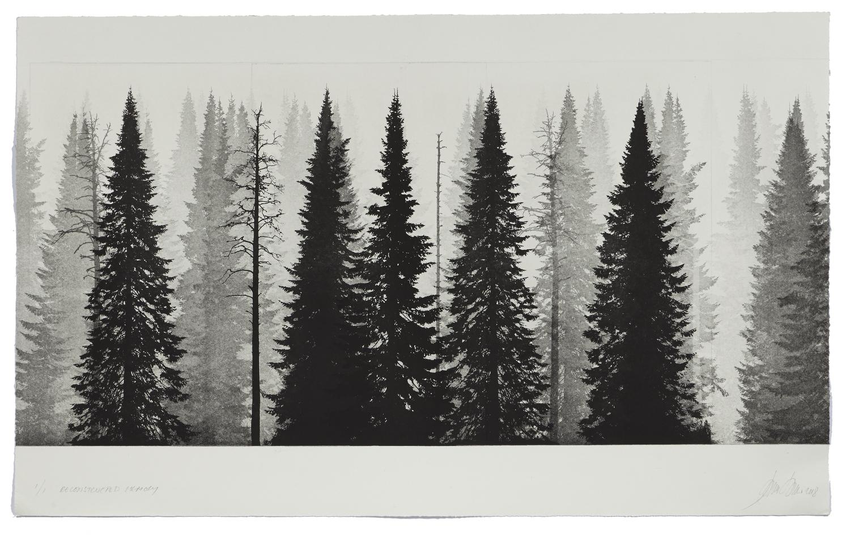 Reconstructed Memory    2018 | 65 x 105 cm | rotogravure et aquatint | 3 prints