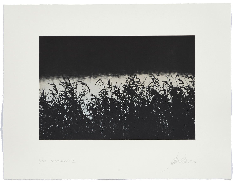 Nocturne II    2016 | 50 x 65 cm | rotogravure et aquatint | 48 prints