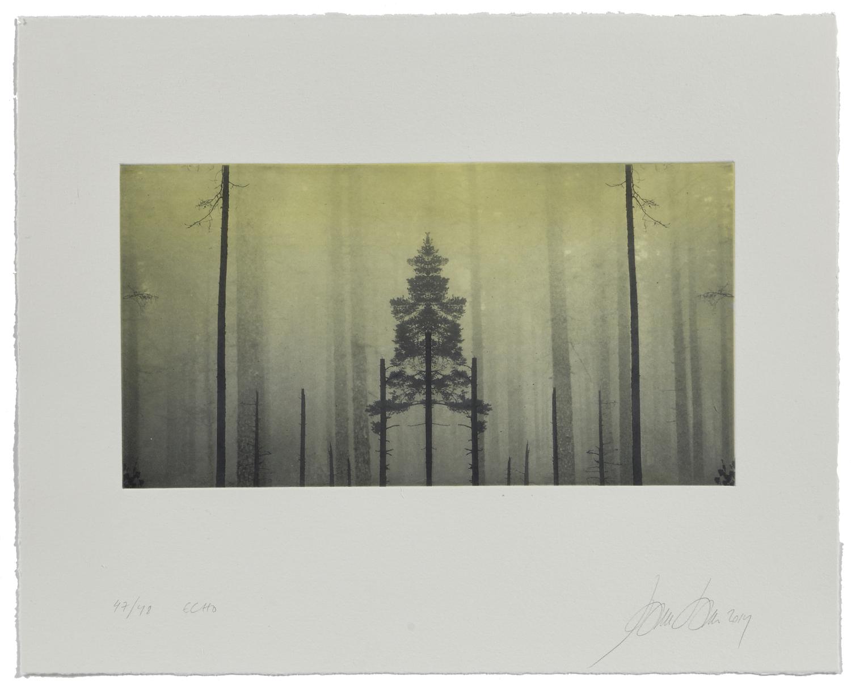 Echo    2019 | 40 x 50 cm | rotogravure et aquatint | 48 prints