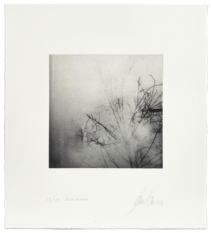 Revelation    2016 | 45 x 40 cm | rotogravure et aquatint | 48 prints