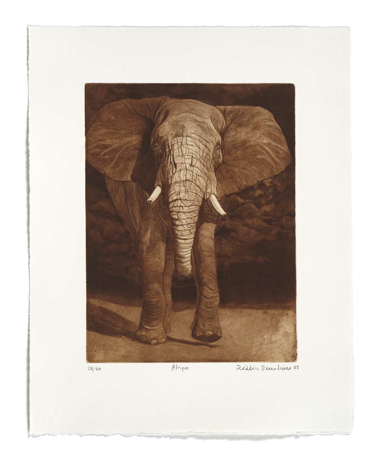 Afrique   2007 | 44 x 35cm | Etching and drypoint | 30 prints | Editor Atelier-Galerie A. Piroir