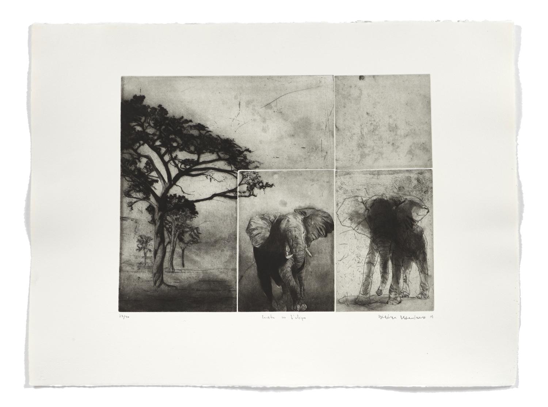 Fenêtre sur l'afrique   2007 | 56 x 76cm | Aquatint, etching and drypoint | 40 prints | Editor Atelier-Galerie A. Piroir