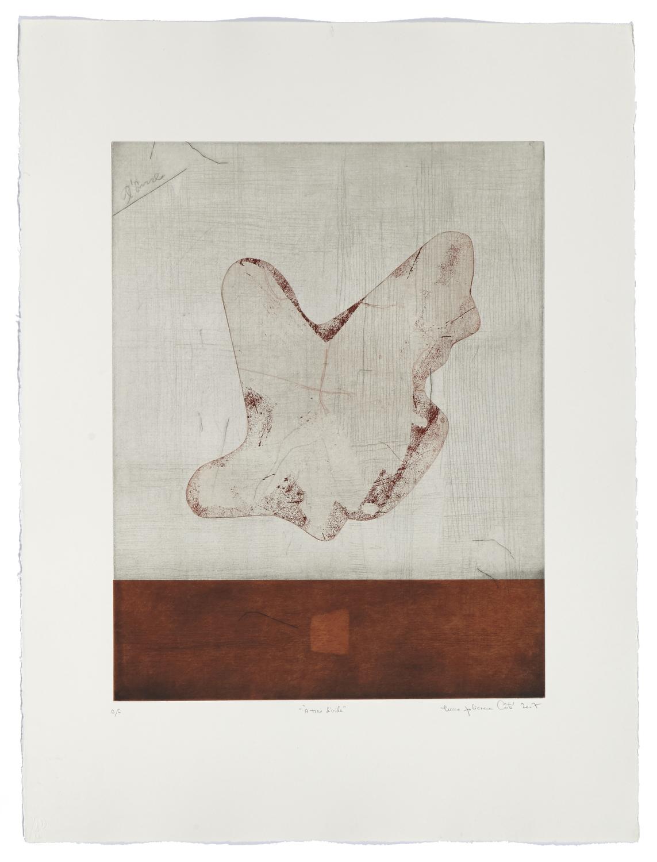 À tire d'aile    2007 | 76 x 57cm | Eau-forte, chine and cut plate | 25 prints