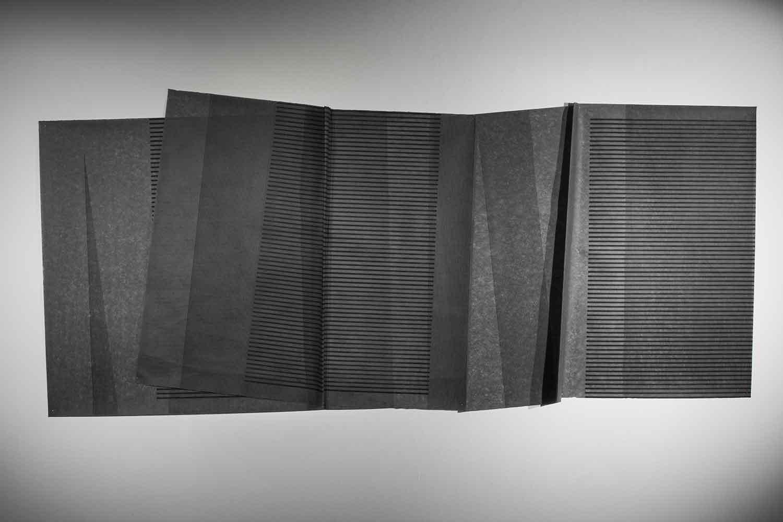 Scope of Shadows II - Grey Matter    2016 | 107x 234 cm | Linocut on interfacing paper