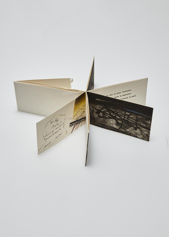 La dernière page, le dernier signe …    Text by Fernando Arrabal, Michel Bohbot and engraving by Julius Baltazar  1986 | 8 x 15 cm |  enhanced engraving and typography | 27 prints |  editor Aux dépens d'un amateur