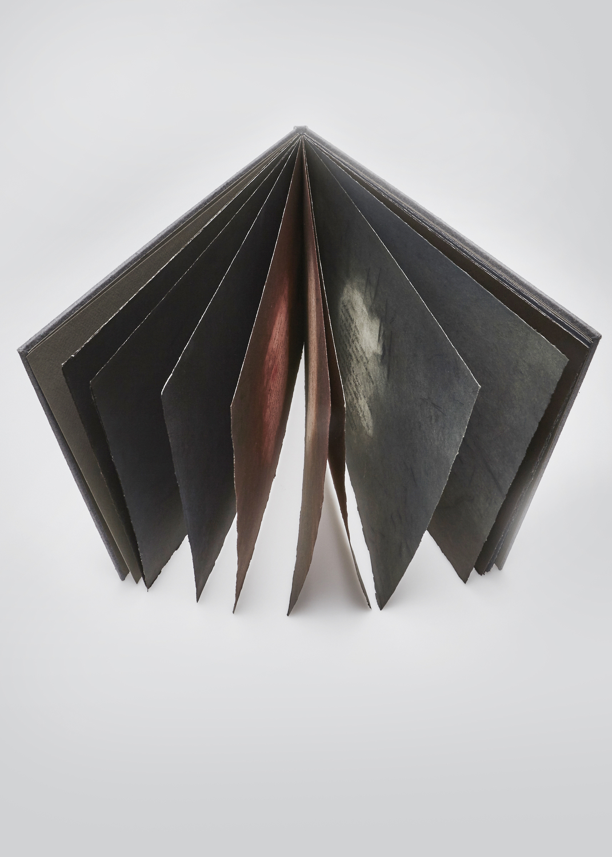 You Do Not Have To Love Me    Text by Léonard Cohen and engraving by Josette Trépanier  1996 | 39 x 29 cm | eau forte et typography | 25 prints