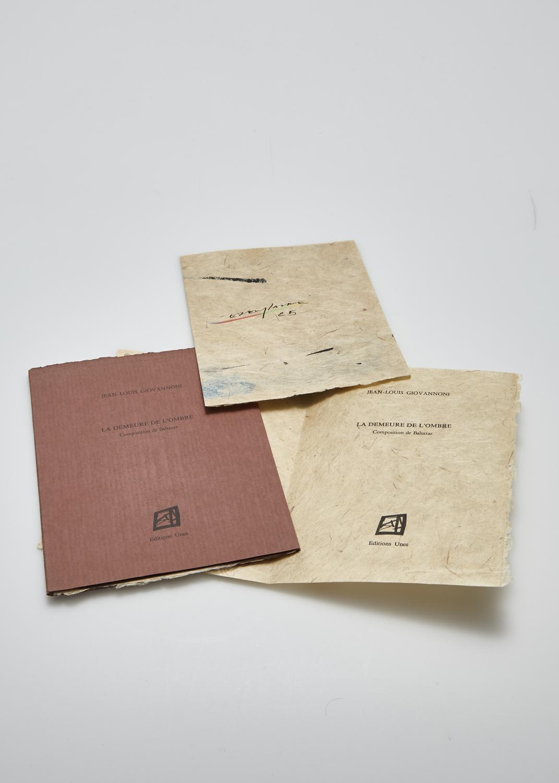 La demeure de l'ombre    Text by Jean Louis Giovannoni and engraving by Julius Baltazar  1987 | 16 x 12 cm | engraving and typography | 33 prints | edition Unes