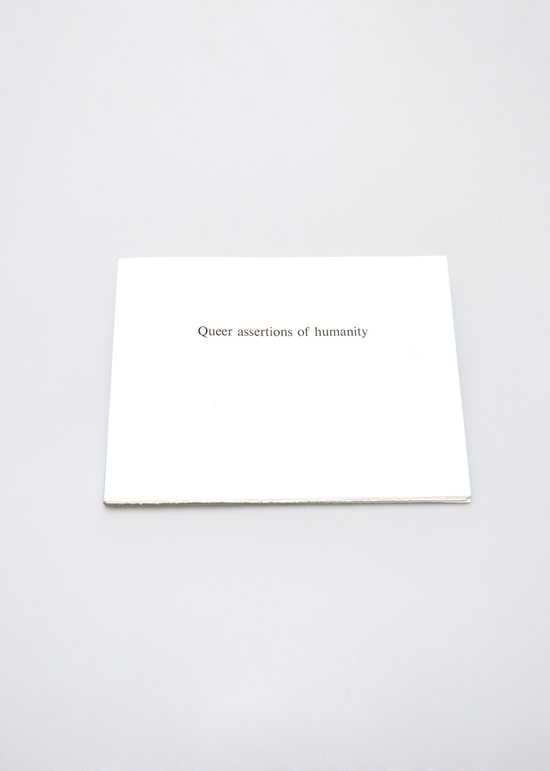 Queer assertions of humanity    Text by oshua Watsky and engraving by René Laubiès  2004 | 33 x 25 cm | engraving and typography | 64 prints | editor A. Piroir