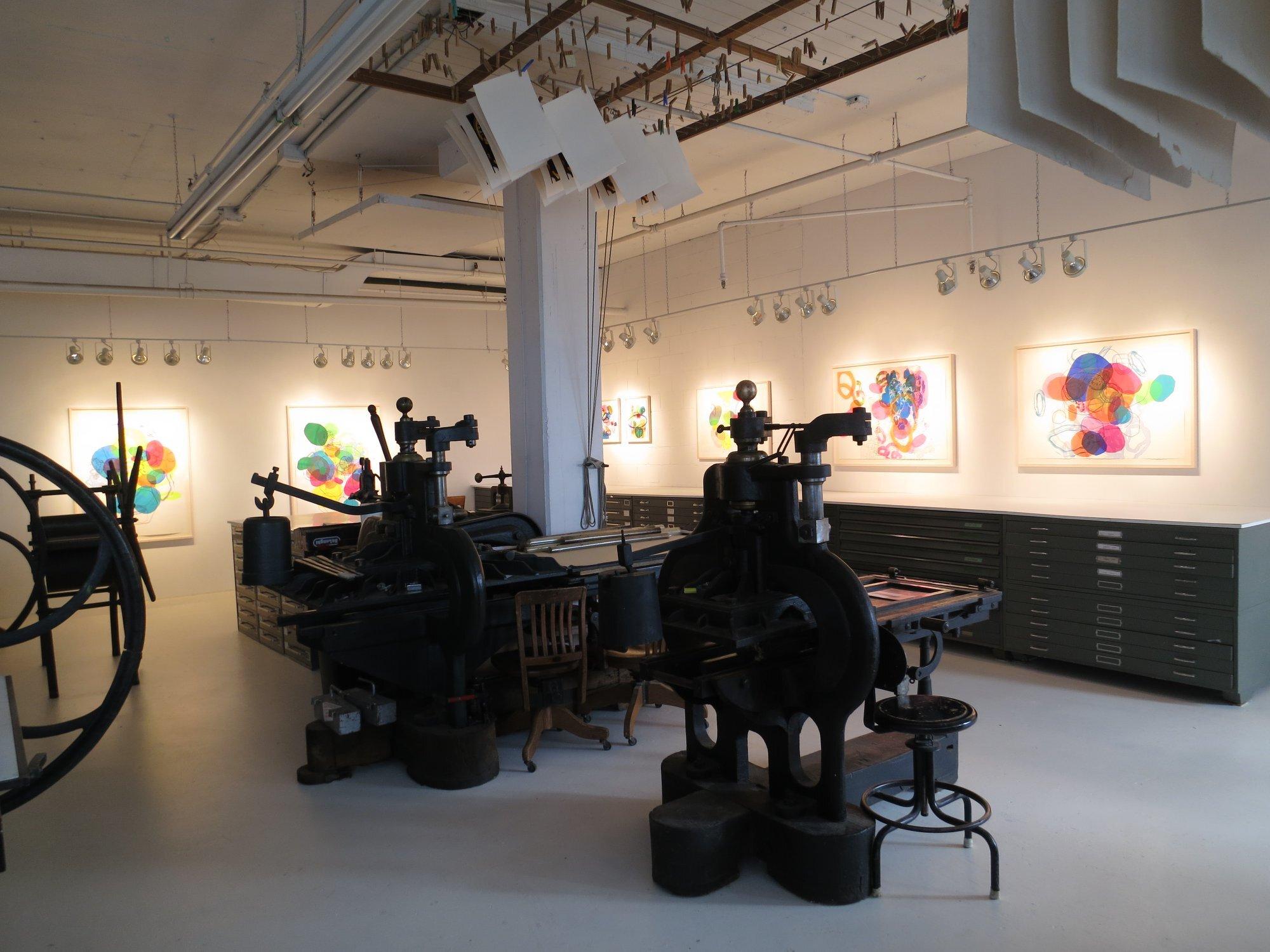 Vue de l'exposition, site web de l'artiste TANIA GIRARD SAVOIE -