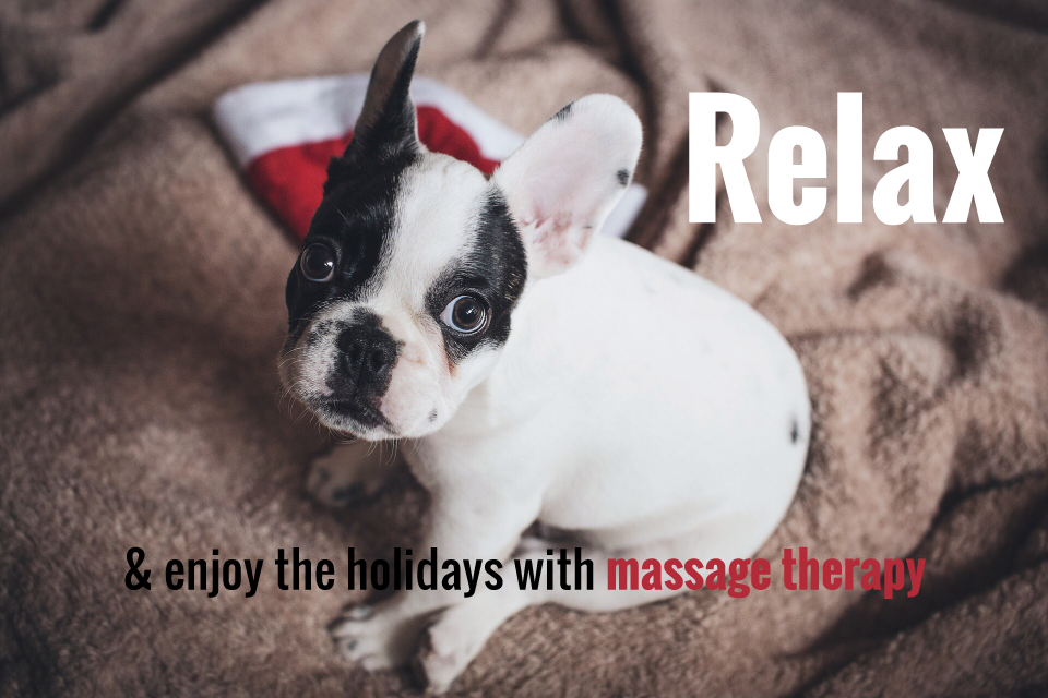 Relax-and-enjoy-the-holidays-with-massage-therapy-puppy.png