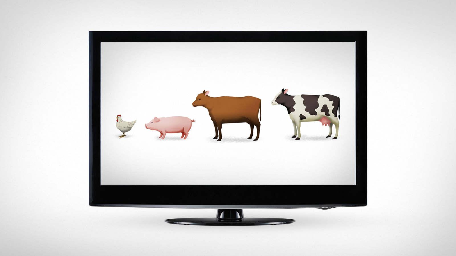 All-Animals_1600_c.jpg