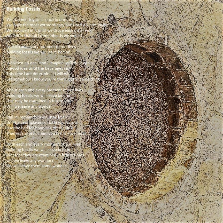 03 Building Fossils.jpg
