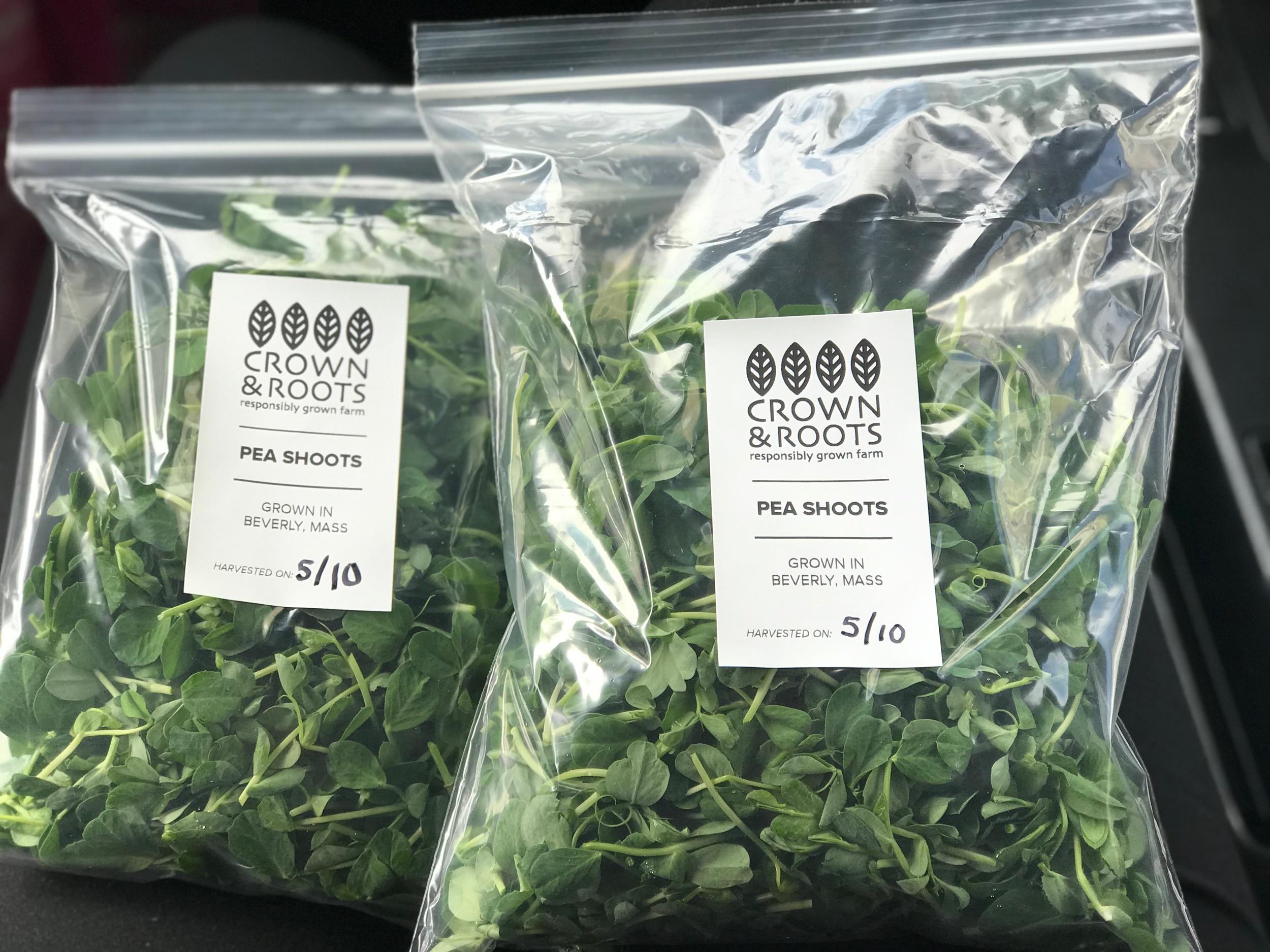 Pea Shoots — 1/4 pound bags