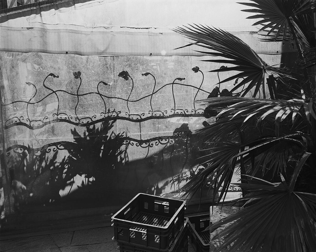 December 1, 2001, Ben Yehuda Street, Jerusalem. Photographed: January 2004