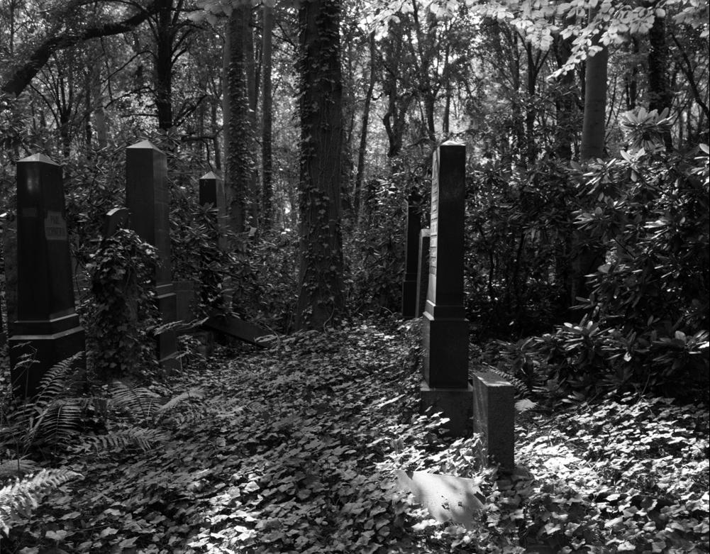 Overgrown Weissensee Jewish Cemetery, Berlin 2007