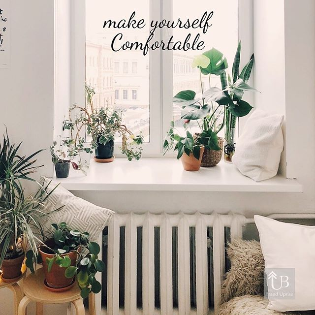 🌱🍃🌿 Learn how to be comfortable with being uncomfortable to reach outstanding results. #motivation #quotes #comfortable #white #room #green #decor #decoration #marketing #idea #inspiration #BrandUprise #Cali #BayArea #summer #life #photo #photooftheday #art #picture #smile #chill #fun #nice #good #followers #instalife #instagood