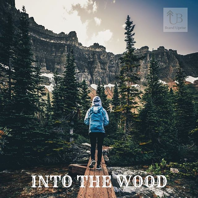 🌲 Wander where your heart takes you.  #wood #hike #hiking #mountain #nature #sky #marketing #idea #inspiration #BrandUprise #Cali #BayArea #life #photo #photooftheday #art #picture #smile #chill #fun #nice #good #instagram #followers #life #instalife #instagood #instapic #instaphoto