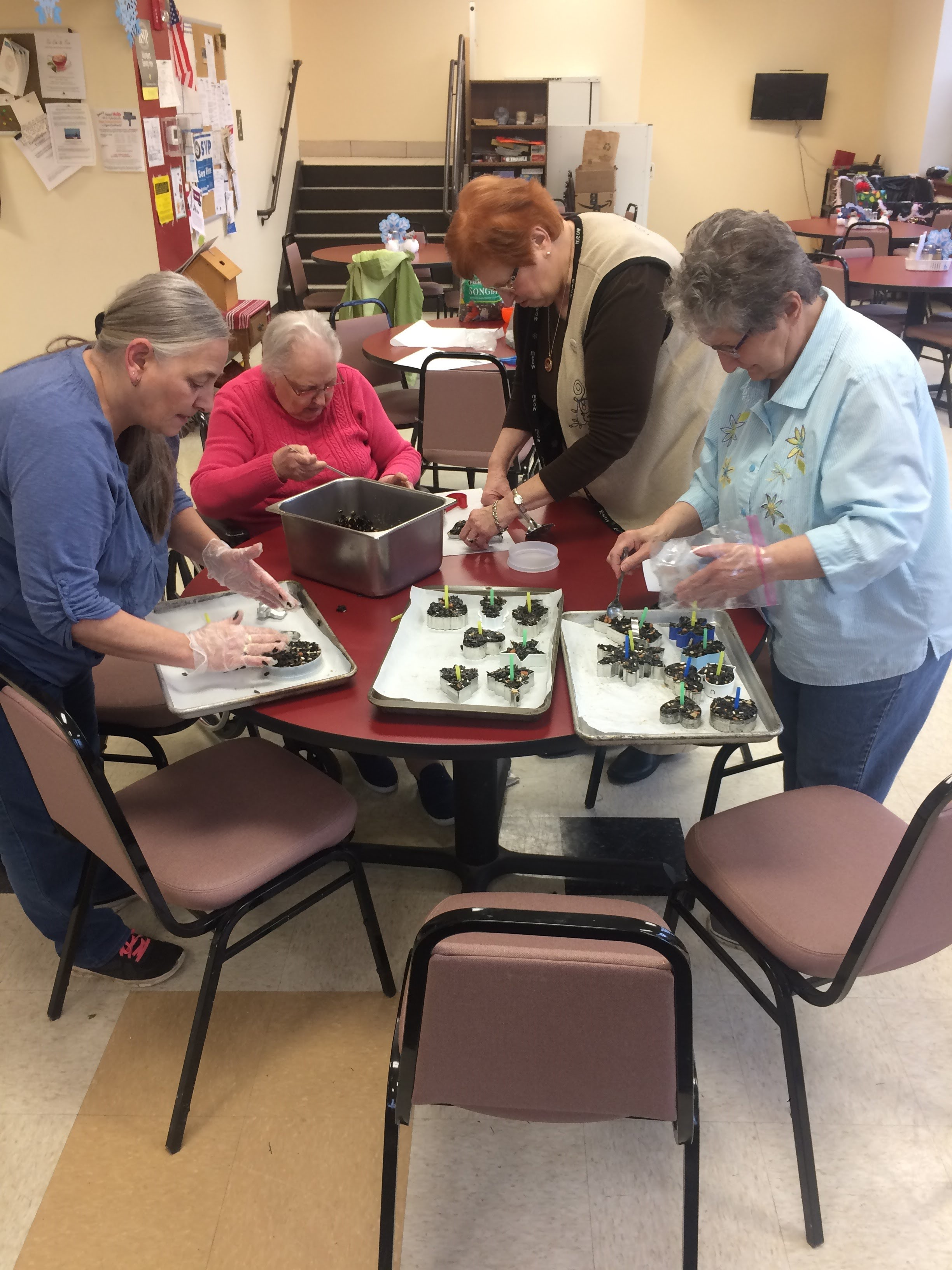 Birdseed Ornament Making - Older Adult programming.jpg