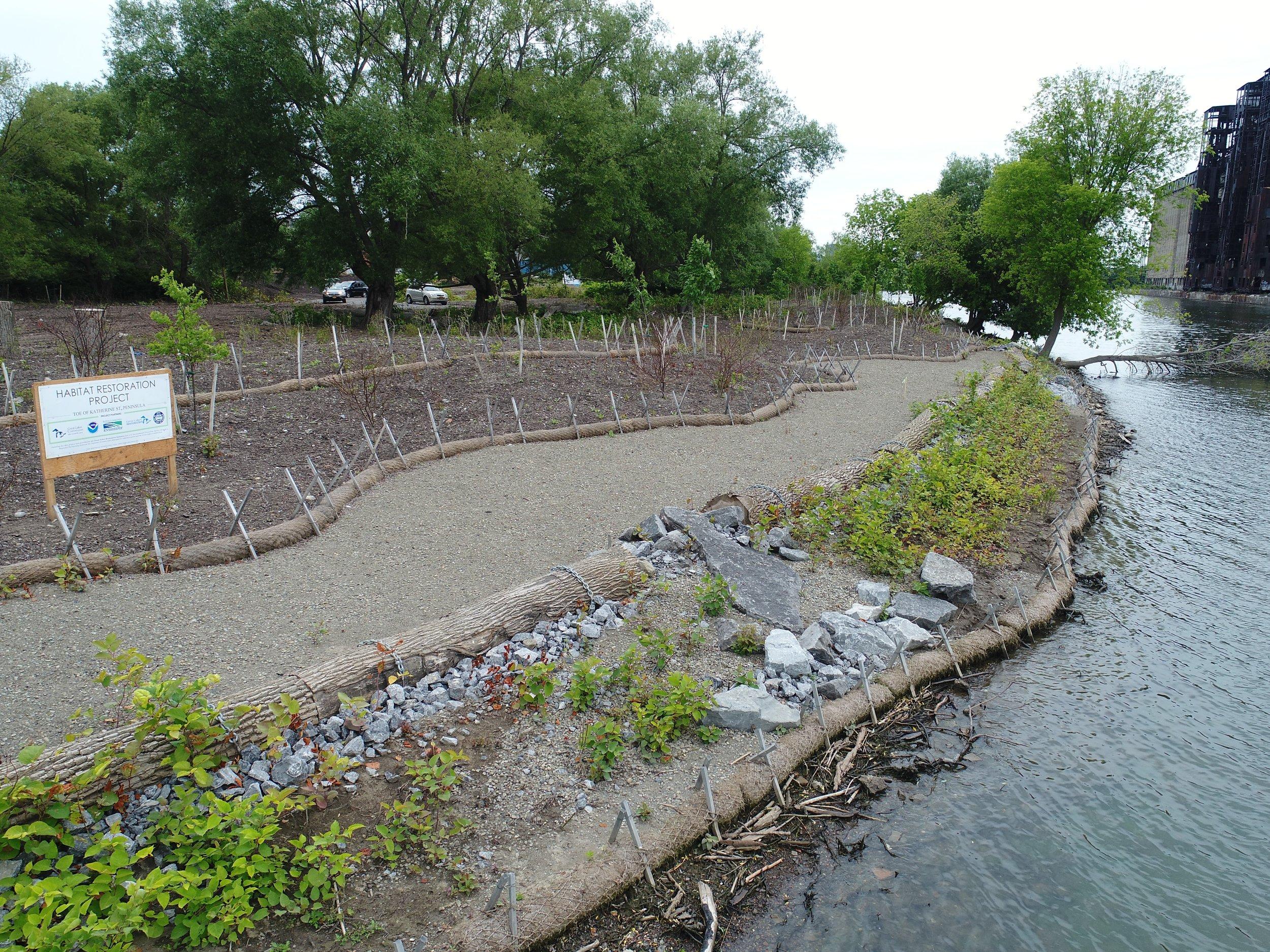 Waterway Revitalization.JPG
