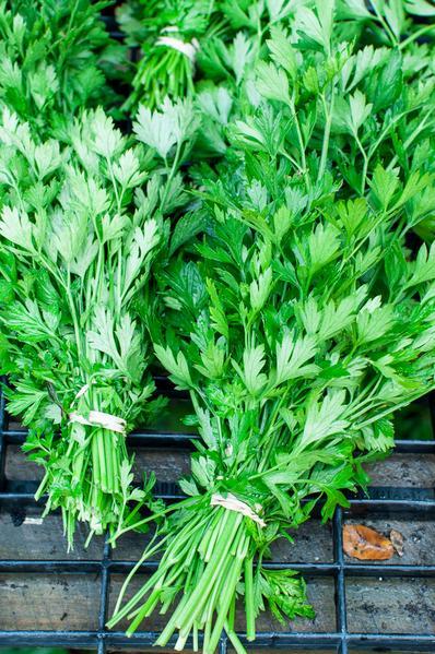 parsley_grande.jpg