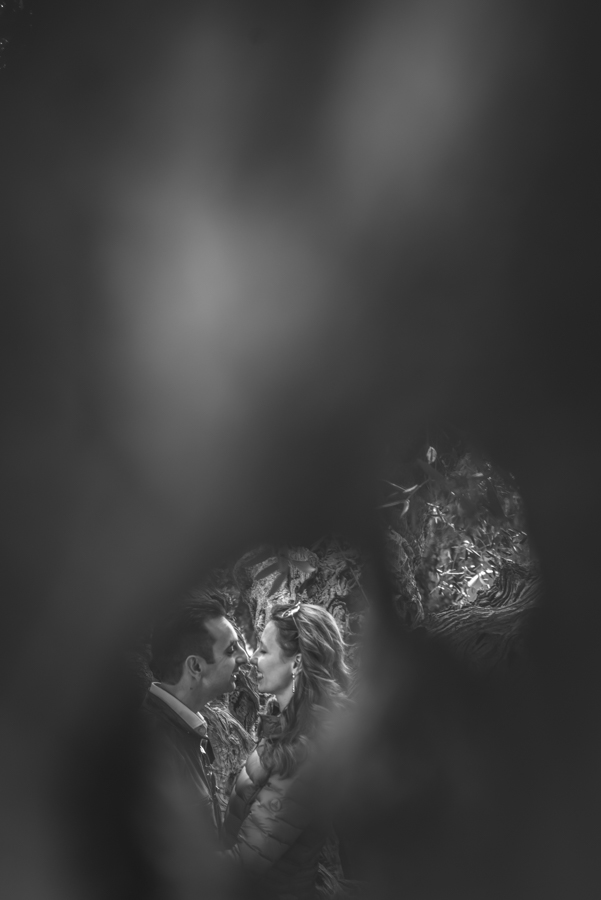 _DSC9115.jpg