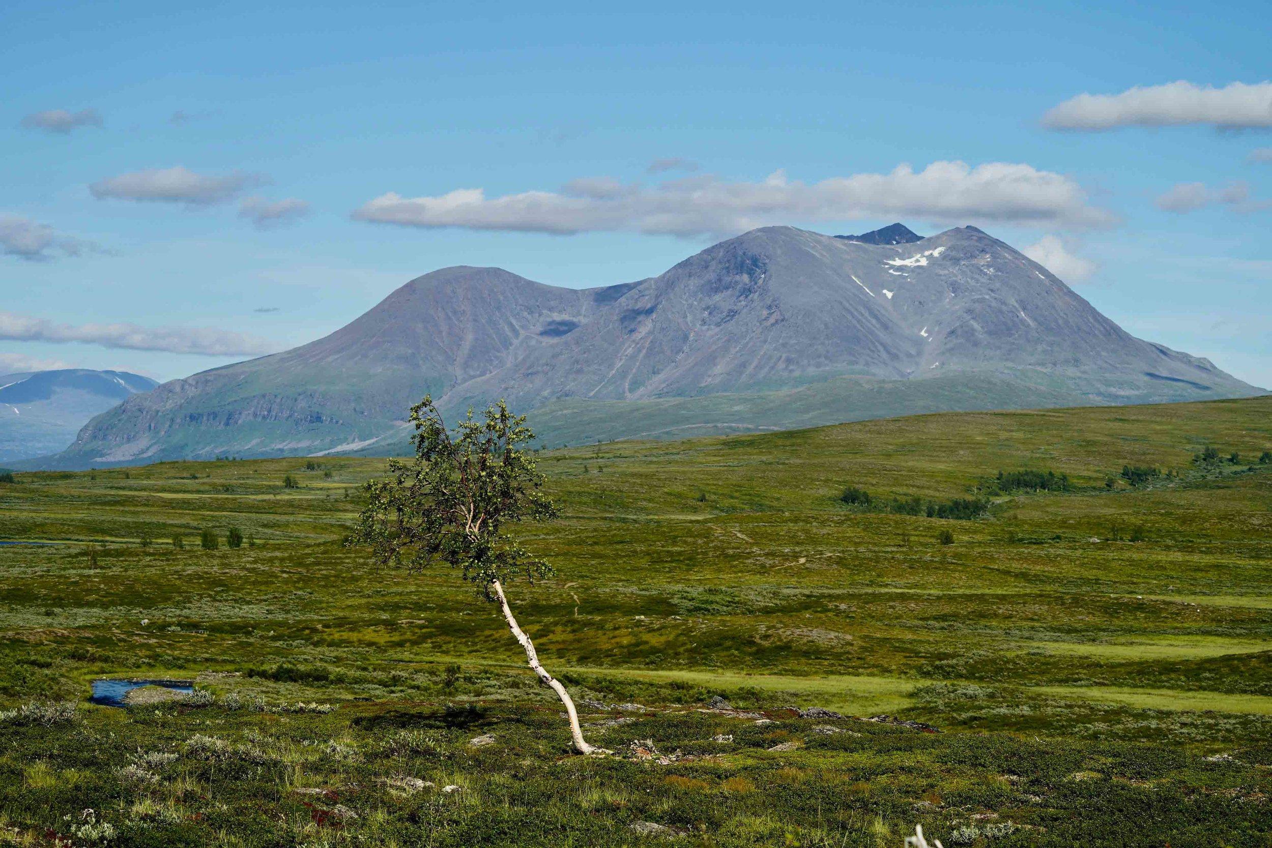 Lapland Day 2-7.jpg