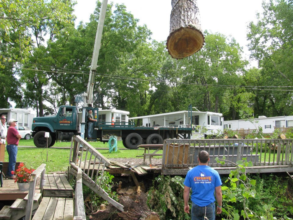 Tree Services - Remove hazardous branches, keep your land clear, and complete your stump grinding with help from the team at Cranebrook Tree Service & Mulch.