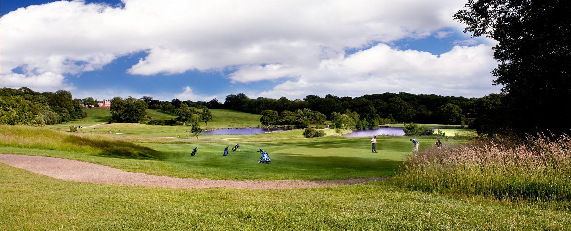 Golf-Top.jpg