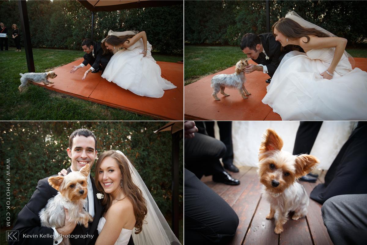carissa-brandon-wedding-photographer-ct.jpg