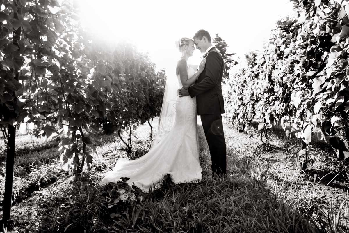 salt-water-farm-vineyard-wedding-meghan-charlie-2023.jpg
