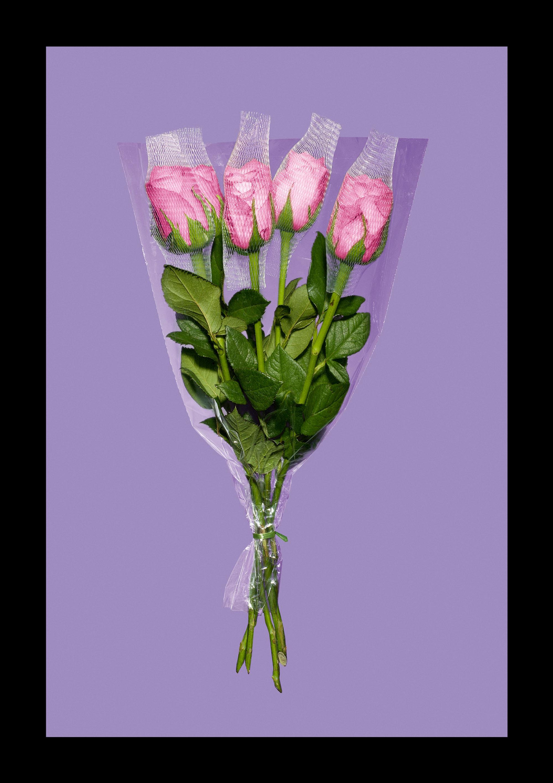 rose_ny.jpg