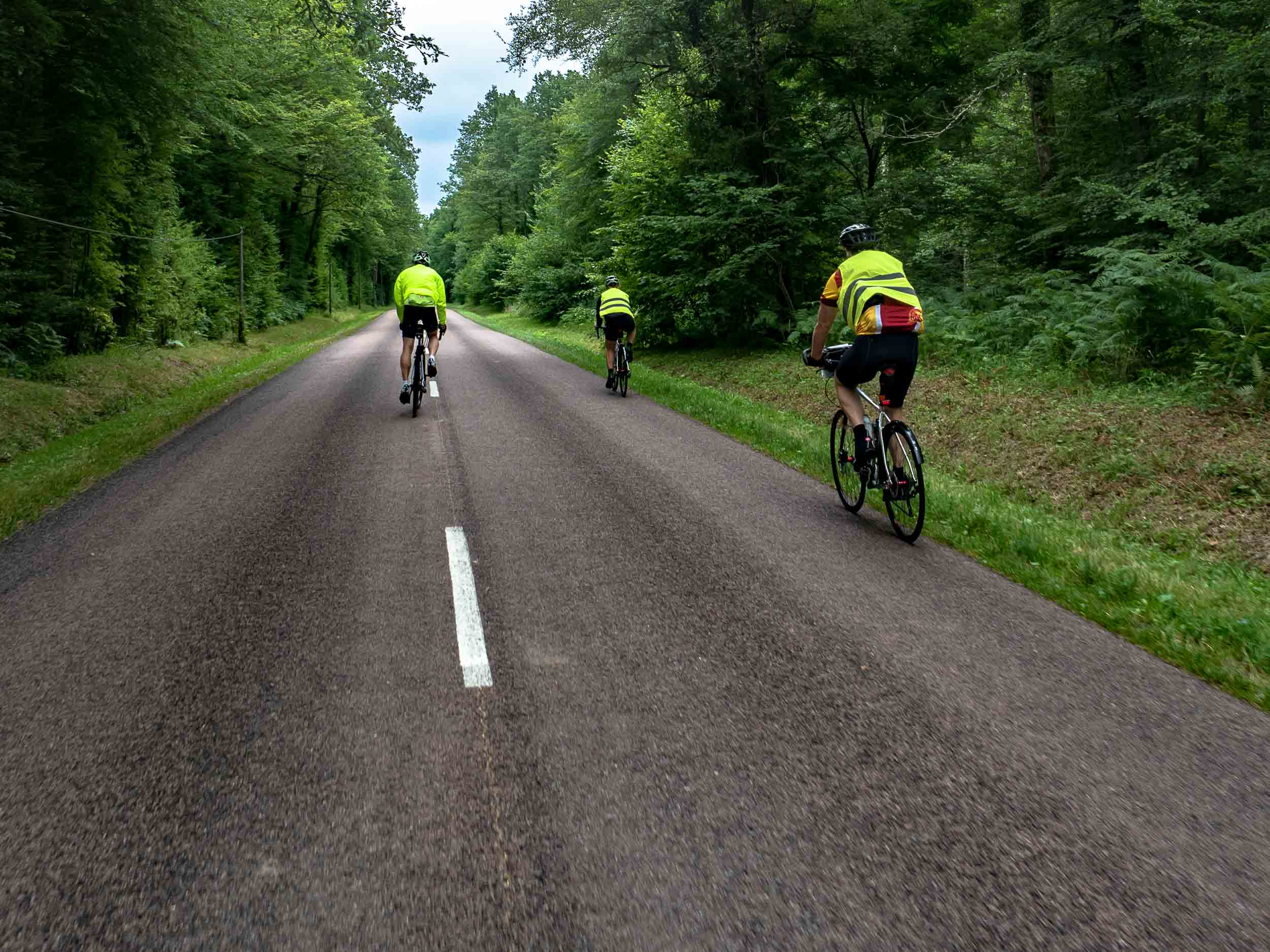 tda-cycling-paris-freiburg-forest.jpg