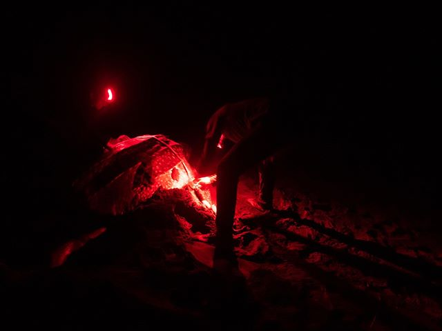 Saving the turtles and their nests is hard work. It's nightly four-hour patrols, trudging on soft sand — in total darkness — fending off mosquitoes and sand flies, bearing the Caribbean humidity and rubbing shoulders with shadowy poachers who roam the same remote beach looking to sell these eggs on the black market. But the chance to save a nest, and hence a new generation of turtles, and come face to face with a huge leatherback under the dim glow of red light is totally worth it, blisters, bites and all. This photo was taken on a week-long expedition with Biosphere Expeditions in collaboration with LAST (Latin American Sea Turtles).⠀ ..⠀ ..⠀ ..⠀ ..⠀ ..⠀ ..⠀ ..⠀ ..⠀ ..⠀ ..⠀ ..⠀ ..⠀ #biosphereexpeditions #costarica #turtles #leatherbacks #widecast #seaturtleconservation #seaturtle #conservation #oceanconservation #marineconservation #wildlife #marinelife #ecotourism #liveintrepid #getlostnow #exploringtheglobe #wildernessculture #lifeofadventure #explorewithfriends #wanderlust #natgeotravelphoto #nationalgeographic #natgeocreative #picoftheday #yourshotphotographer #global_hotshotz #artofvisuals #fatalframes #turtleconservation #volunteer⠀ ⠀ ⠀ ⠀